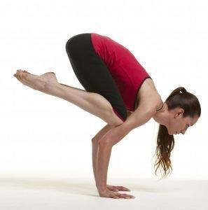 crow-yoga-kinesis